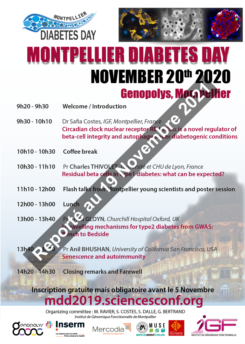 Affiche_MDD_2020_report_2_3.png